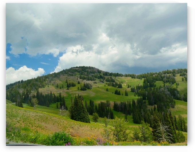 Lamar Valley Yellowstone National Park by On da Raks