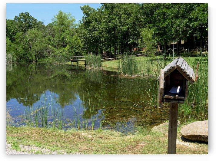 Mailbox by a Pond by On da Raks