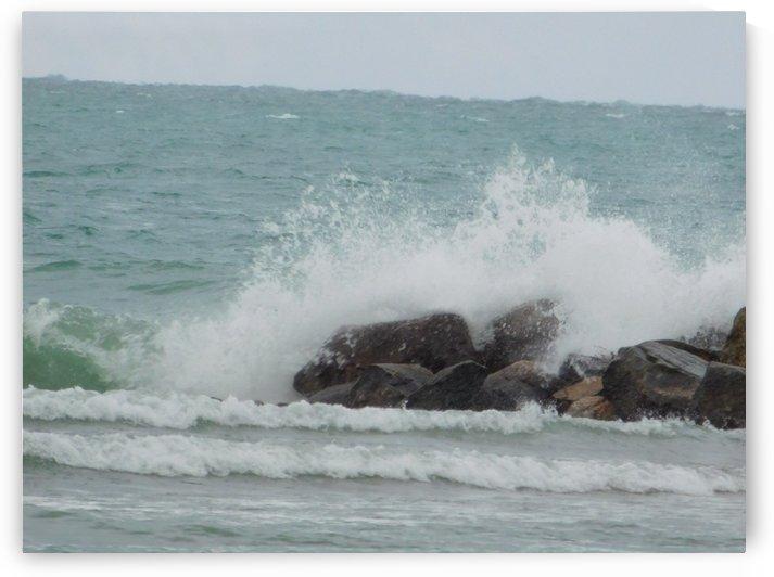 November Wind by Debbie Caughey
