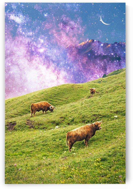 Space Cow Series II by 83 Oranges