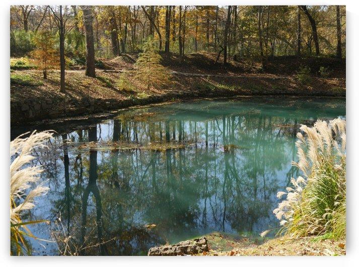 Blue Spring Arkansas by On da Raks