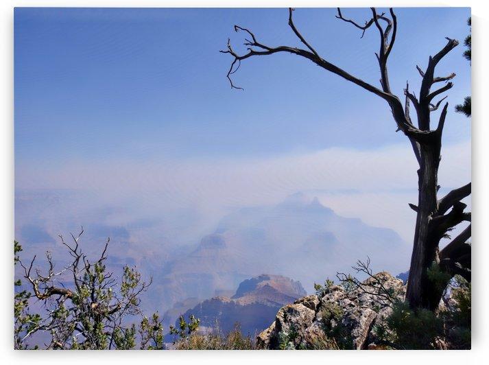 Grand Canyon National Park south rim Arizona by On da Raks