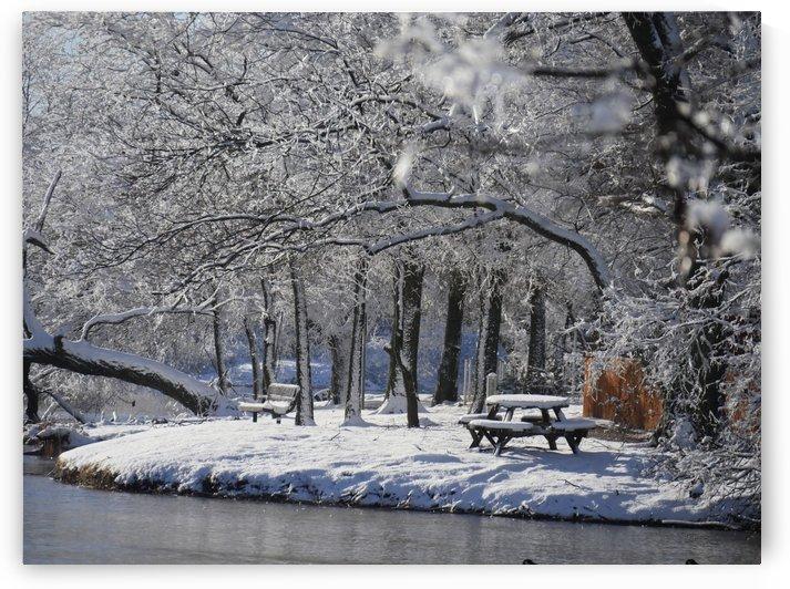Frozen by On da Raks