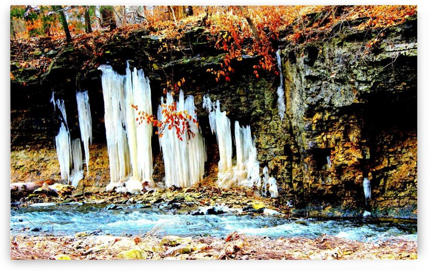 Frozen in Time by Natures Alchemy Captured
