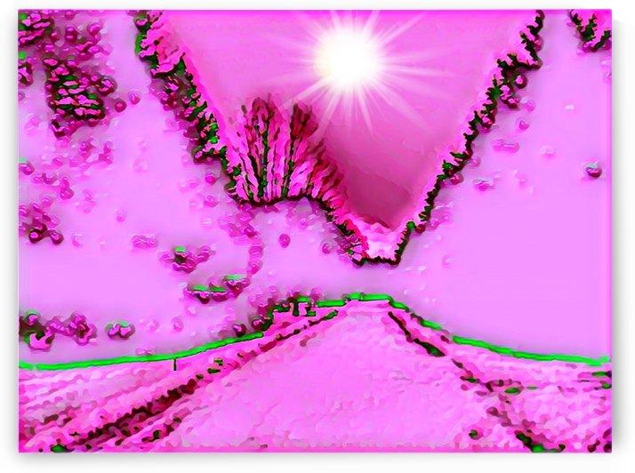 The Pink Season by ZUBERI KIBWE