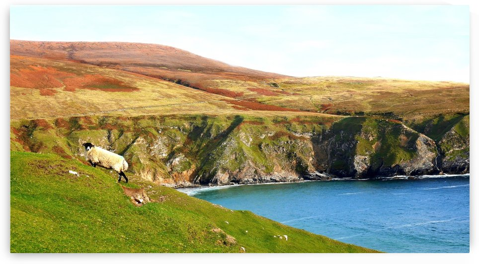 Cliff Posing - Country Donegal by Lexa Harpell