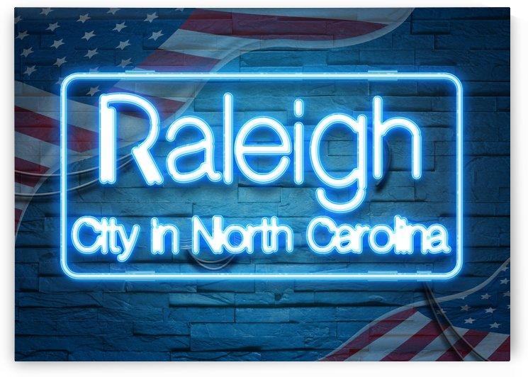 Raleigh City in North Carolina by Gunawan Rb