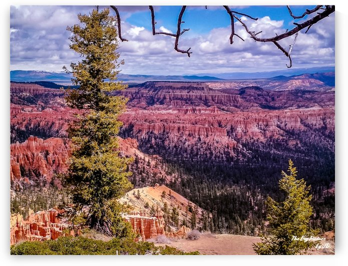 Bryce Canyon (20) by The Big Picture by JD