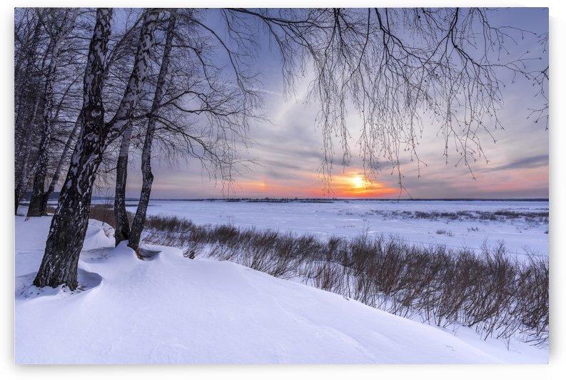 1  DSC_0293 1 by Dobrydnev