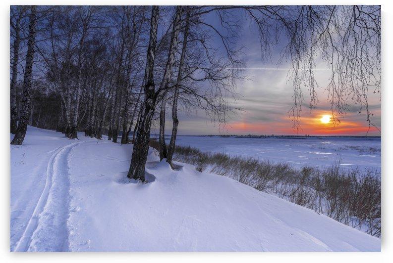 DSC_0289 1   1 by Dobrydnev