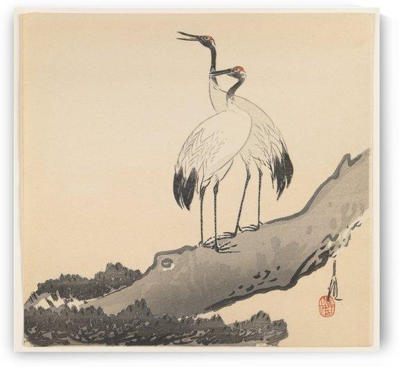 Pair of Cranes on a branch by Ogata Gekko