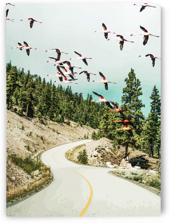 Flamingo Flight by 83 Oranges