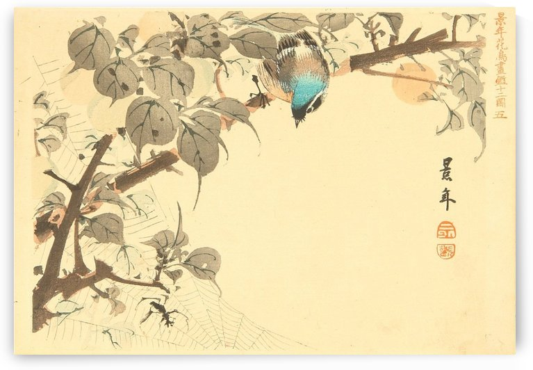 Blue Headed Bird by Ogata Gekko