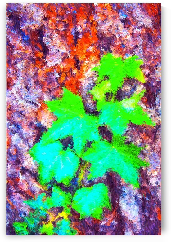 Ivy On Pine Tree Trunk by Joy Watson