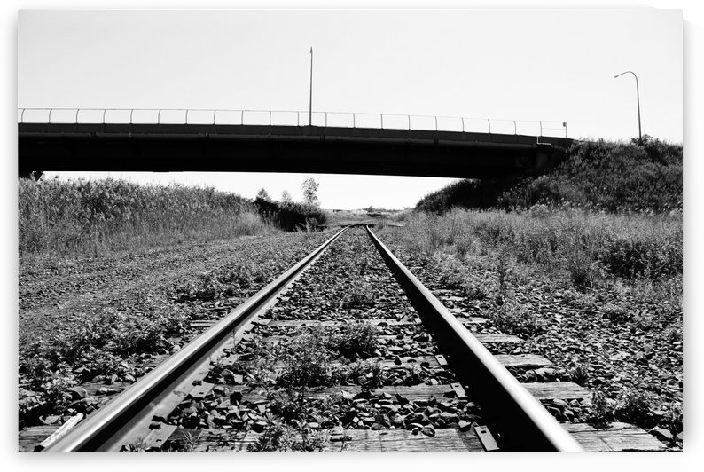 Rails by Ross Simpson