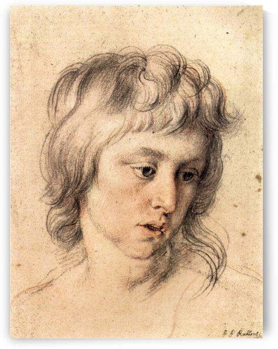 Boys portrait by Rubens by Rubens