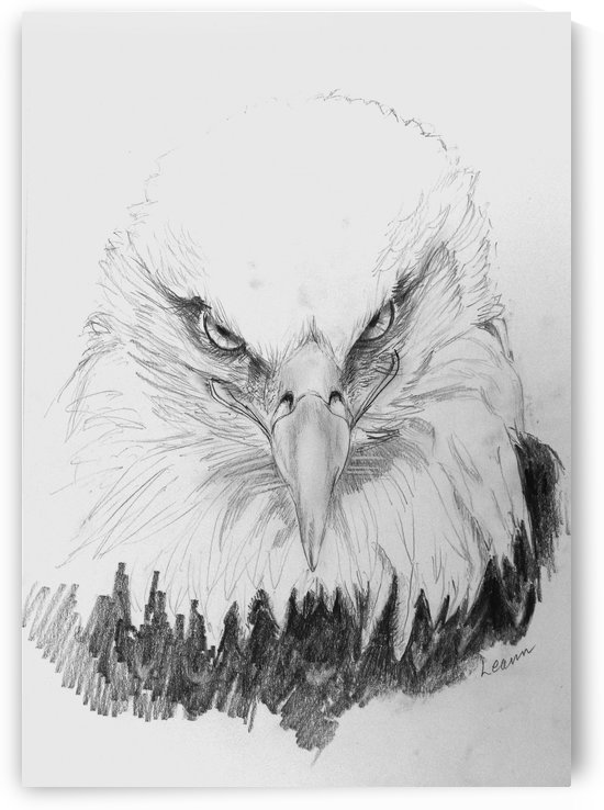 Eagle by Shadow and Form