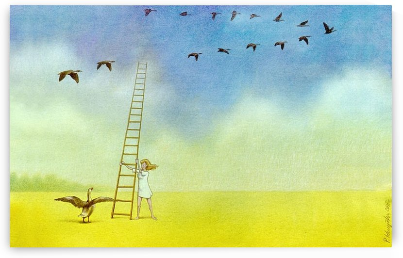 summer s end by Pawel Kuczynski