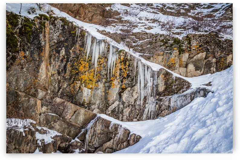On the Rocks by Diane Mintle