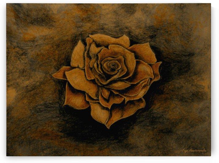 Autumn Rose by Faye Anastasopoulou