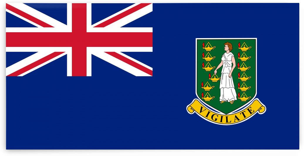 British Virgin Islands Flag by Fun With Flags