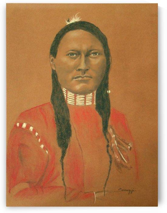 Cheyenne Scout  by Jayne Somogy