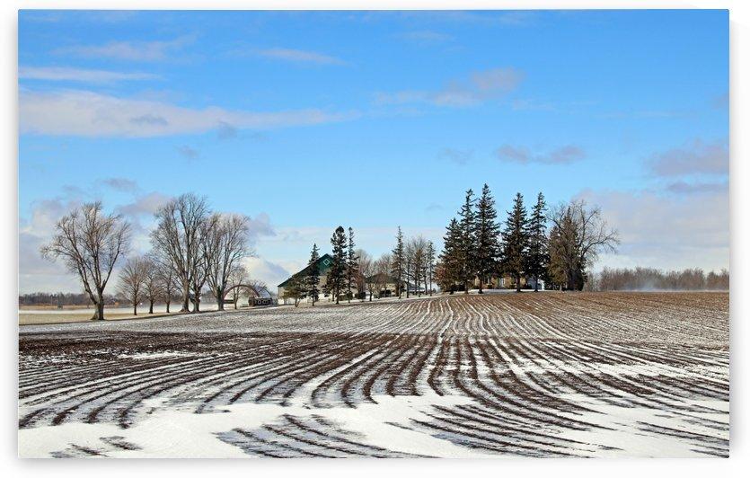 Winter Farm by Deb Oppermann