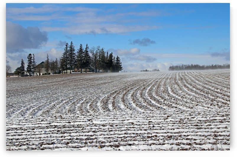 Snow Drifting Across The Fields by Deb Oppermann
