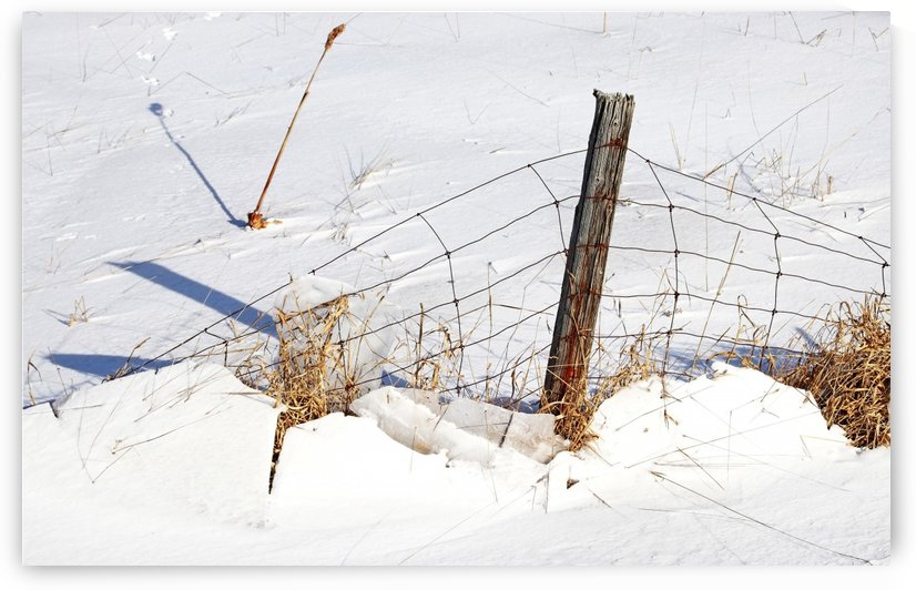 Weight Of Winter I by Deb Oppermann