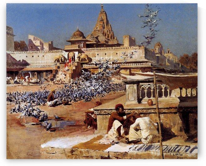 Feeding The Sacred Pigeons, Jaipur by Edwin Lord Weeks