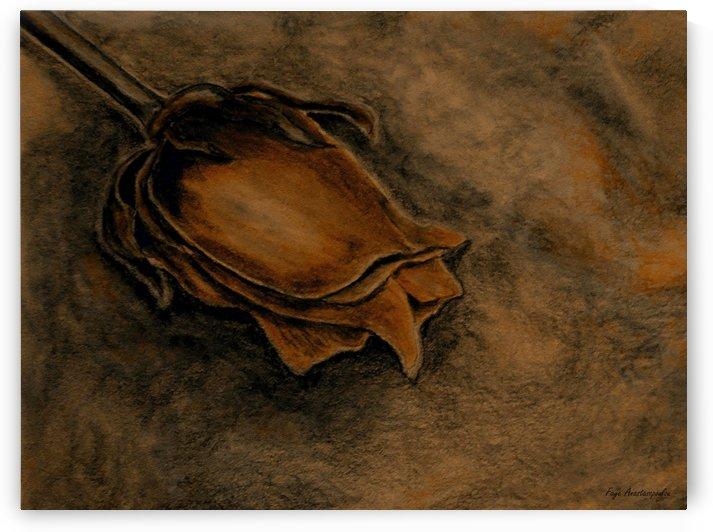 Rusty Rose by Faye Anastasopoulou