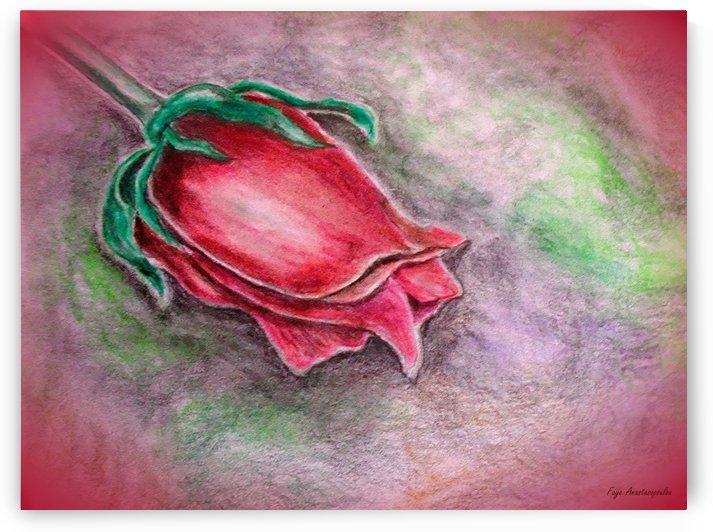 Rose Fantasy by Faye Anastasopoulou