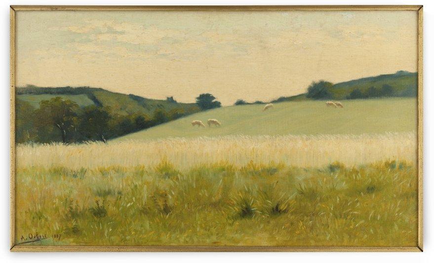 Dans les champs de Dielette Manche by Alphonse Osbert
