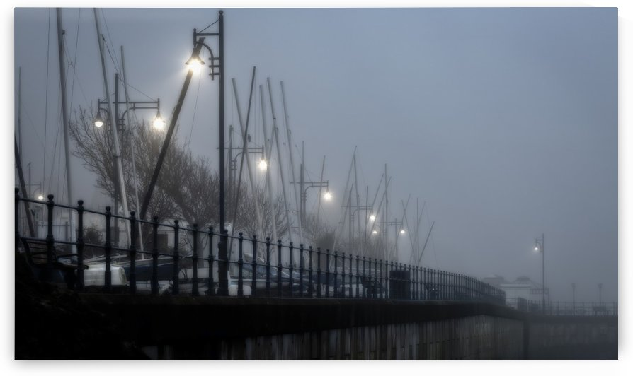 Street lights in the mist by Leighton Collins