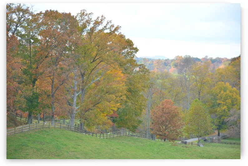 Fall In Virginia Photograph by Katherine Lindsey Photography