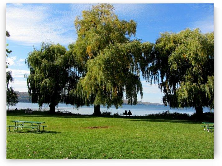 Stewart Park Ithaca New York by Battaboom