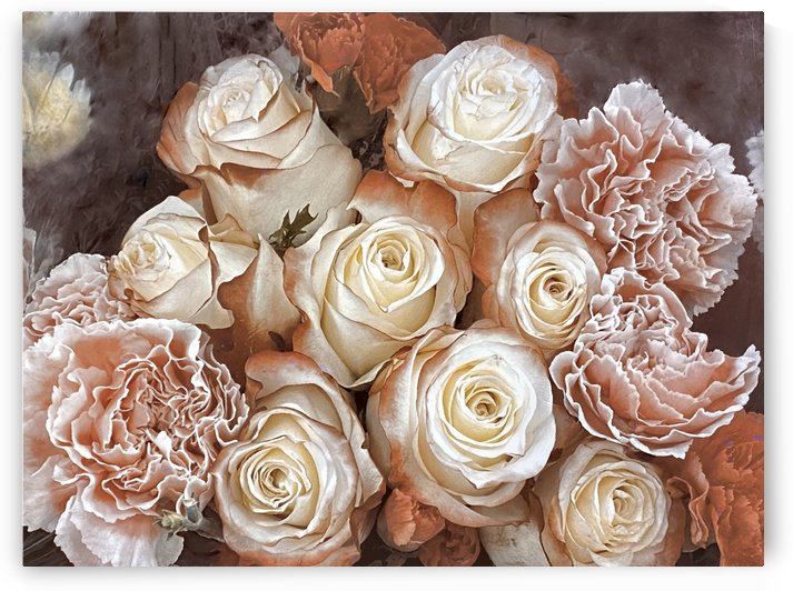 Vintage roses  by Photography by Janice Drew