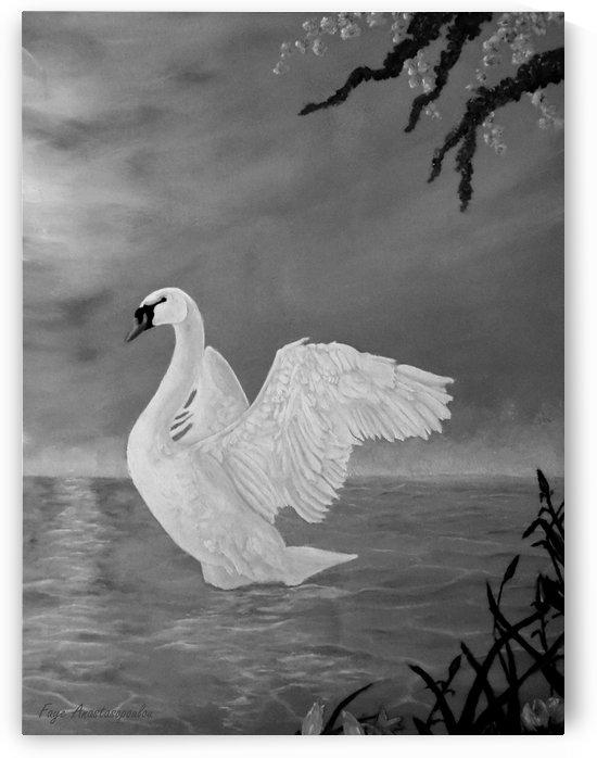Lake Dancer by Faye Anastasopoulou