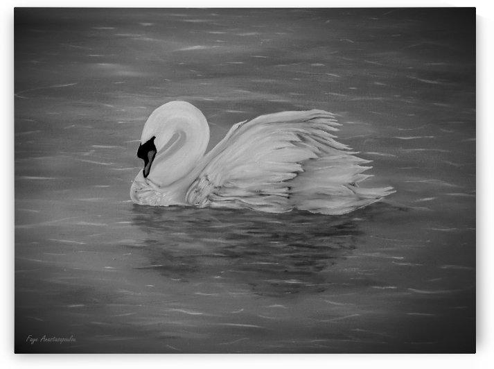 Lone Swan by Faye Anastasopoulou