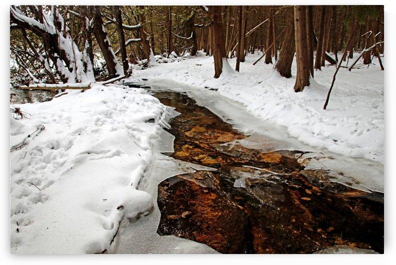 Winter Creek by Deb Oppermann