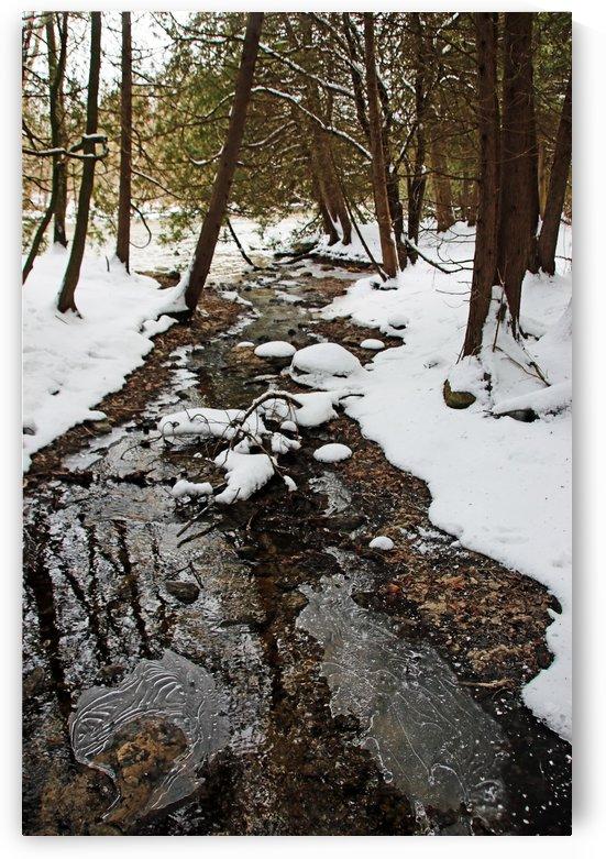 Winter Creek III by Deb Oppermann