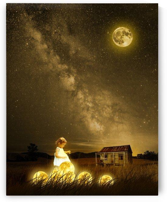 The Moonlight Guardian by Rafael Ramirez