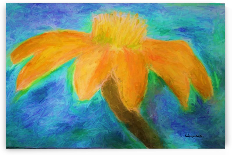 Orange flower by Aurelia Schanzenbacher Sisters Fine Arts