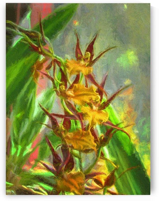 Hawaiian Orchids Watercolor by Aurelia Schanzenbacher Sisters Fine Arts