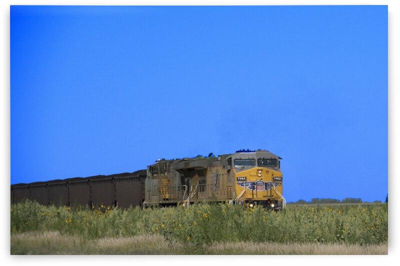 North Platte Coal Run by Sean Mahedy