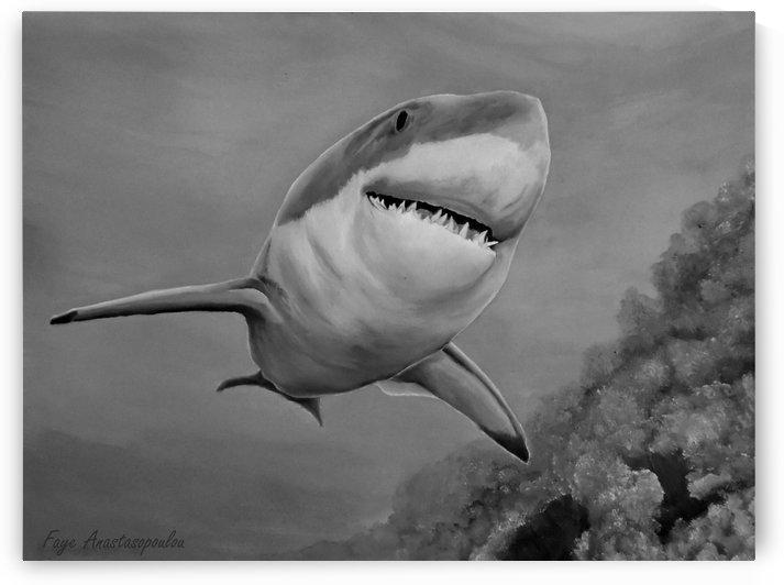 Reef Shark by Faye Anastasopoulou