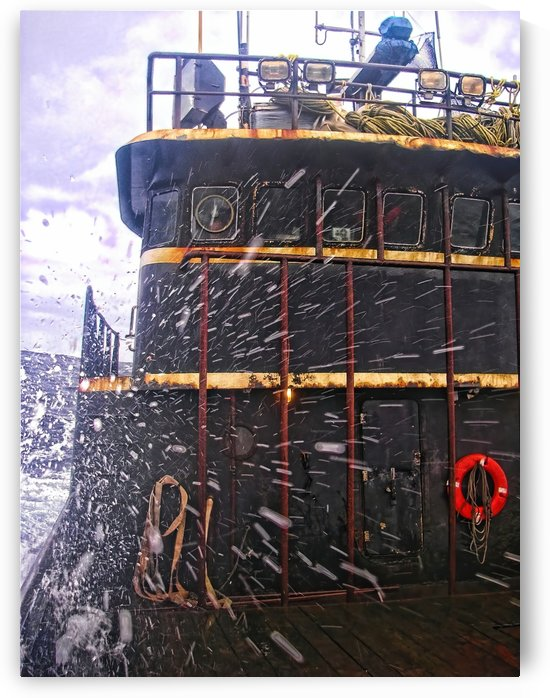 Eye of the Storm by Aurelia Schanzenbacher Sisters Fine Arts