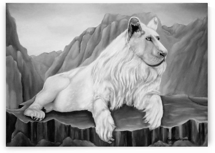 Resting White Lion by Faye Anastasopoulou