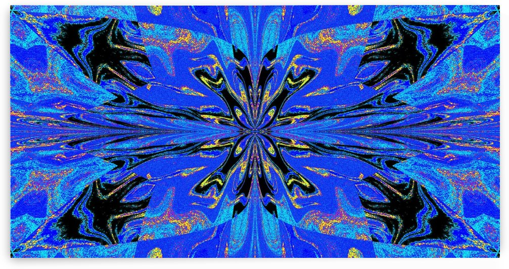 Abstract Butterfly 14 by Sherrie Larch