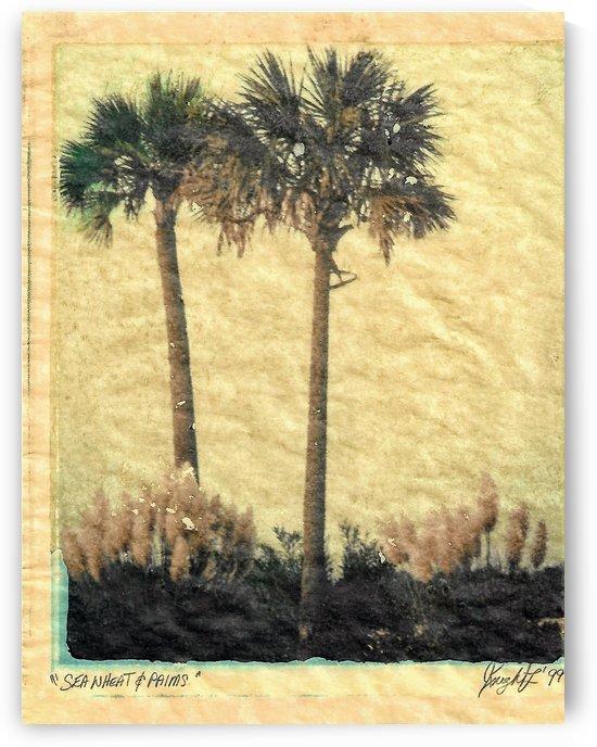 sea wheat and palmsand by Jon Knight Loruenser